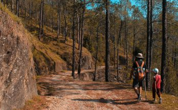 HELPFUL TIPS FOR YOUR FIRST FAMILY HIKE